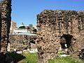 09775 - Rome - Roman Forum (3504248871).jpg
