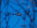 1.24.14ABCNewsHelicopterByLuigiNovi5.jpg