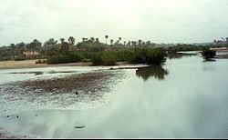 1014013-River south of Fajara-The Gambia.jpg