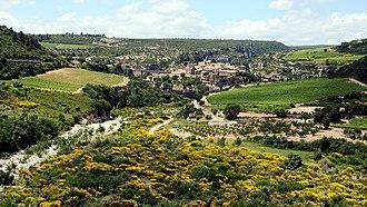 Minervois AOC - winegrowing in Minerve