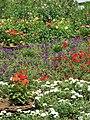 14.08.2008 - panoramio.jpg