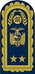 15 - FAE - Pala de Brigadier General - Major General.jpg