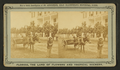15th Amendment, or the Darkey's millennium- 40 acres of land and a mule, from Robert N. Dennis collection of stereoscopic views.png