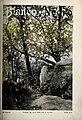 1899-10-28, Blanco y Negro, Tarde de octubre, Lhardy.jpg
