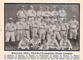1910 Dallas Giants.png