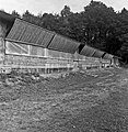 1960 Station Avicole au CNRZ-31-cliche Jean-Joseph Weber.jpg