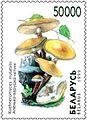 1999. Stamp of Belarus 0337.jpg