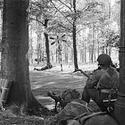 Two men in the foreground, between two trees a small in a wood. In the distance across a road another man in lying down armed with a Bren gun