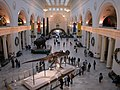 20031231 31 Field Museum of Natural History.jpg