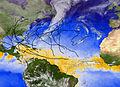 2005 Atlantic Hurricane Season, Image of the Day DVIDS755746.jpg
