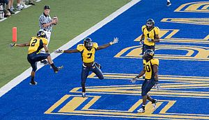 2007 California Golden Bears football team - The Bears celebrate a touchdown