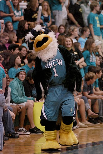 Trask Coliseum - UNCW mascot Sammy C. Hawk celebrates 2008 Midnight Madness