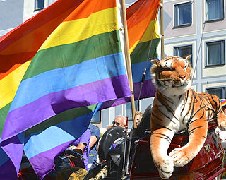 Queer Umbrella term for sexual and gender minorities who are not heterosexual or are not cisgender