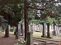 20140526 Algemene Begraafplaats Tongerseweg; Cemetery in Maastricht 15.JPG