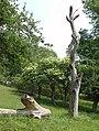20180524260DR Maxen (Müglitztal) Baum am Stauteich der Winterleite.jpg