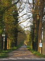 2020-04-11 — Toegangsweg Erve Luttikhengel.jpg