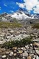 23030 Valfurva, Province of Sondrio, Italy - panoramio (1).jpg
