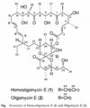 44-homooligomycin E.png
