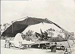 76 Sqn RAAF Kittyhawk Kiriwina Jan 1944.jpg
