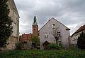 8343viki Prusice. Foto Barbara Maliszewska.jpg