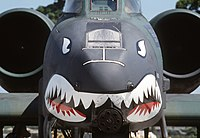 A-10 Thunderbolt II Shark Face.JPEG
