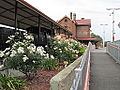 ADG Gawler station gardens.jpg