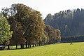 AT-34724 Schloss Rosegg, Lukretia 217.jpg
