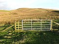 A gate on Broom Hill - geograph.org.uk - 683133.jpg