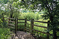 A kissing gate and fence at Woodland Trust wood Theydon Bois Essex England.JPG