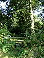 A stile for easy access into Great Wood from the road - geograph.org.uk - 554108.jpg