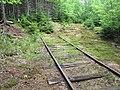 Abandoned wye section of old railway, Elmira, PEI (42272340724).jpg