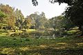 Acharya Jagadish Chandra Bose Indian Botanic Garden - Howrah 2011-01-08 9830.JPG