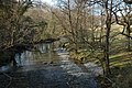 Afon Dulas - geograph.org.uk - 378834.jpg