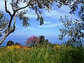 Agios Ioannis landscape.jpg