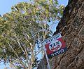 Agronobank Egged busstop sign.JPG