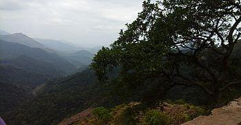 Agumbe ghat.jpg