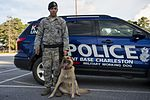 Airman's best friend—the military working dog 160816-F-CC297-0281.jpg