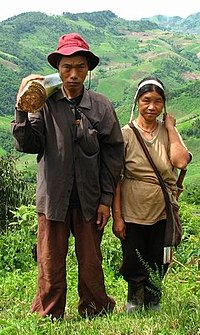 man and woman in northern Thailand - husband carries stem of banana-plant, which will be fed to their pigs