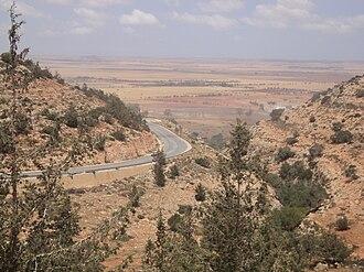 Mediterranean woodlands and forests - Marj escarpment, Jebel Akhdar mountains, northeastern Libya.