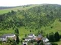 Alendorf, Eifel, Germany. Wacholderschutzgebiet (Juniper Reserve) - panoramio.jpg