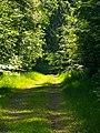 Allmandweg - panoramio.jpg