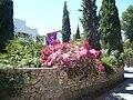 Almuñécar, Granada, Spain - panoramio - georama (2).jpg