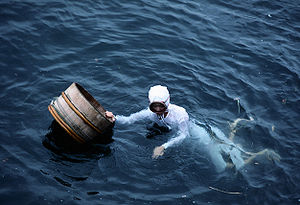 Pearl hunting - Pearl diver in Japan