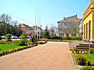 Amara, Romania - Image: Amara 01