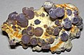 Amethyst & purple chalcedony (Tertiary; Sulawesi, Indonesia) 4 (31500053438).jpg