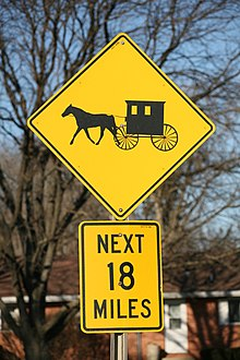 Old order amish rules for dating