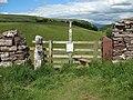 An odd pair of gateposts - geograph.org.uk - 1406855.jpg