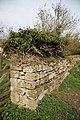 Ancient stones - geograph.org.uk - 1247093.jpg