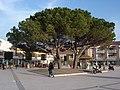 Andernos - panoramio.jpg