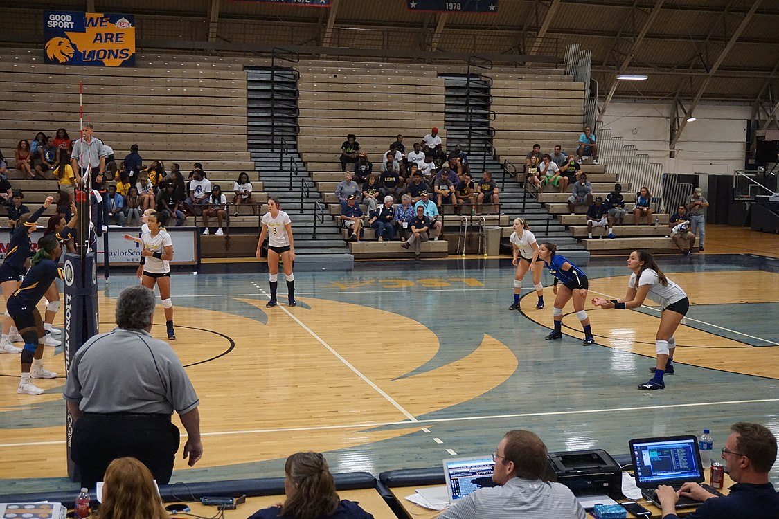 Angelo State vs. Texas A&M–Commerce volleyball 2017 12.jpg